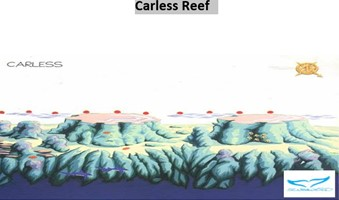 /photos/dive-sites/Carless Reef_4cab0_lg.jpg